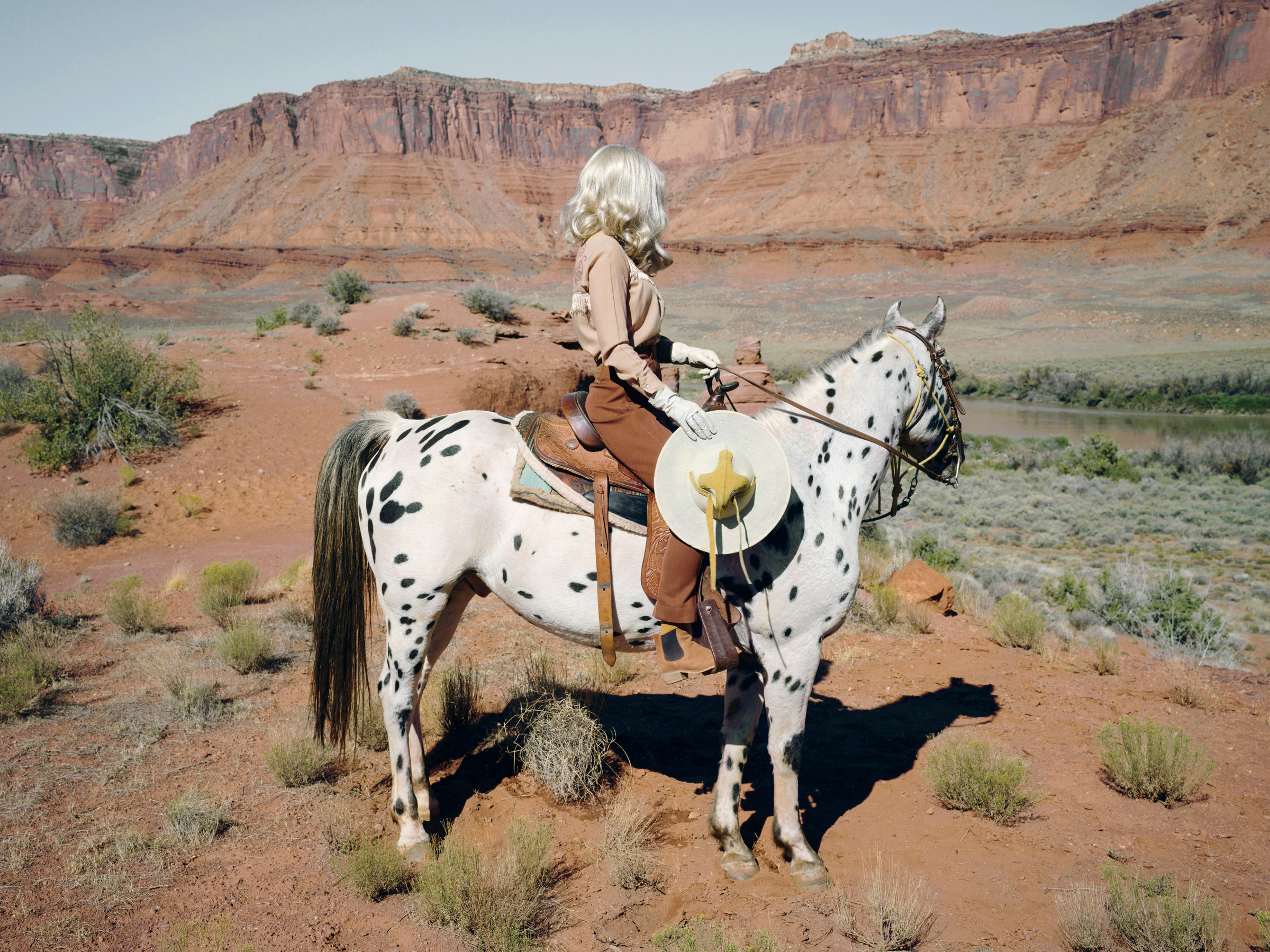 glorious anja niemi she could have been a cowboy the imaginary cowboy desert horse